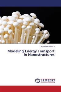 Modeling Energy Transport in Nanostructures