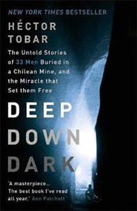 Deep down dark: the untold stories of 33 men buried in a chilean mine, and
