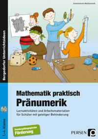 Mathematik praktisch: Pränumerik. mit CD