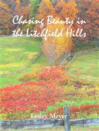 Chasing Beauty in the Litchfield Hills