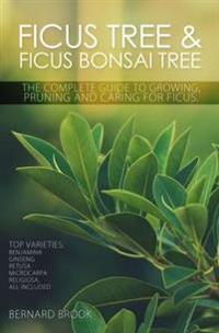 Ficus Tree and Ficus Bonsai Tree. the Complete Guide to Growing, Pruning and Caring for Ficus. Top Varieties: Benjamina, Ginseng, Retusa, Microcarpa,