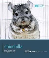 Chinchilla.