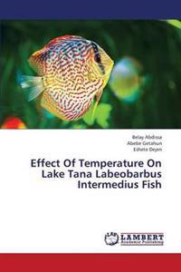 Effect of Temperature on Lake Tana Labeobarbus Intermedius Fish