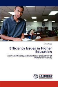 Efficiency Issues in Higher Education