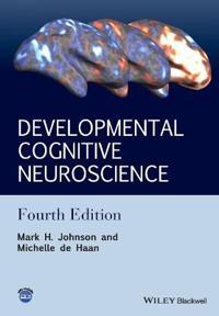 Developmental Cognitive Neuroscience: An Introduction, 4th Edition