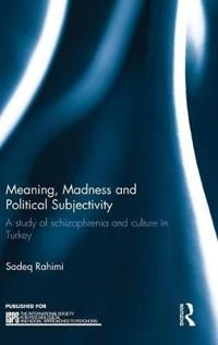 Meaning, Madness and Political Subjectivity: A Study of Schizophrenia and Culture in Turkey