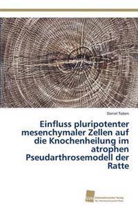 Einfluss Pluripotenter Mesenchymaler Zellen Auf Die Knochenheilung Im Atrophen Pseudarthrosemodell Der Ratte