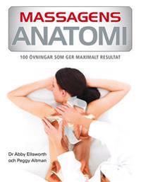 Massagens anatomi