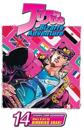 Jojo's Bizarre Adventure: Part 3--Stardust Crusaders, Vol. 14