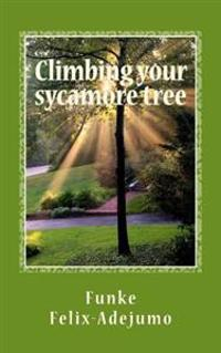 Climbing Your Sycamore Tree: Nurturing Your Relationships