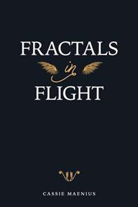Fractals in Flight