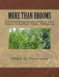 More Than Brooms: : GIS-Based Mapping and Survey of Tiger Grasses in Northern Tablas, Philippines