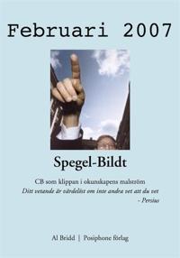 Spegel-Bildt, februari 2007. CB som klippan i okunskapens malström.