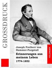 Erinnerungen Aus Meinem Leben (Großdruck): 1774-1852