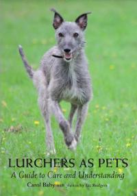 Lurchers As Pets