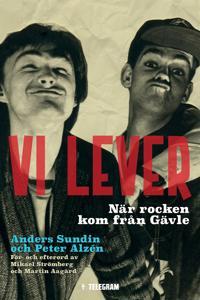 Vi lever - När rocken kom från Gävle