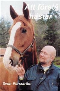 Att förstå hästar