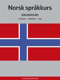 Norsk Språkkurs