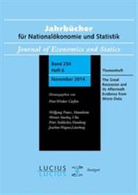 The Great Recession and its Aftermath: Evidence from Micro-Data