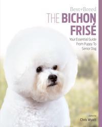 The Bichon Frise
