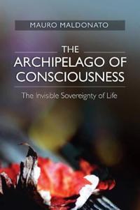 The Archipelago of Consciousness