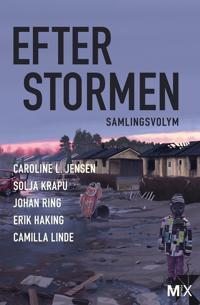 Efter stormen (utökad)