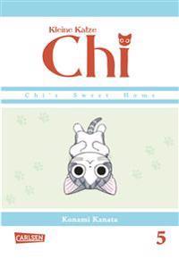 Kleine Katze Chi 05