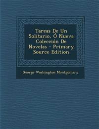 Tareas de Un Solitario, O Nueva Coleccion de Novelas