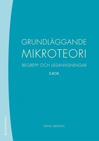 Grundläggande mikroteori