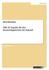 Drs 20- Impulse Fur Den Konzernlagebericht Der Zukunft