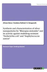 Synthesis and Characterization of Silver Nanoparticles by Rhizopus Stolonifer and Its Activity Against Multidrug Resistant Escherichia Coli and Staphy