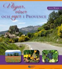 Vägar, viner och vyer i Provence
