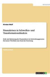 Finanzkrisen in Schwellen- Und Transformationslandern