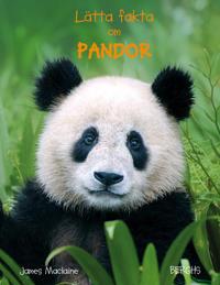 Lätta fakta om pandor