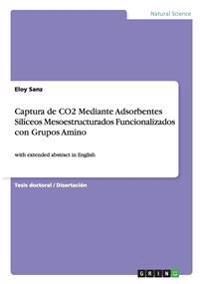 Captura de Co2 Mediante Adsorbentes Siliceos Mesoestructurados Funcionalizados Con Grupos Amino