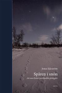 Spåren i snön : att vara kyrka i norrländska glesbygder