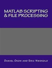 MATLAB Scripting & File Processing