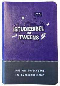 Studiebibel for tweens; Det nye testamente