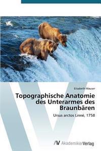 Topographische Anatomie Des Unterarmes Des Braunbaren