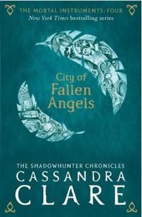 The Mortal Instruments 4: City of Fallen Angels