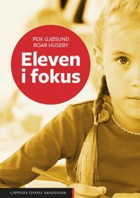 Eleven i fokus