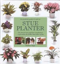 En praktisk guide til stell av stueplanter