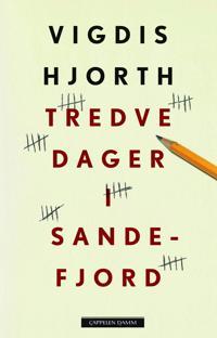 Tredve dager i Sandefjord