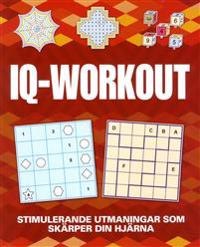 IQ Workout