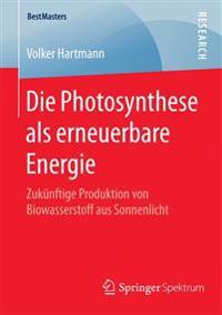 Die Photosynthese Als Erneuerbare Energie