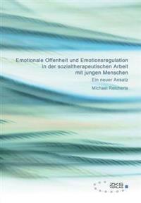 Emotionale Offenheit Und Emotionsregulation in Der Sozialtherapeutischen Arbeit Mit Jungen Menschen