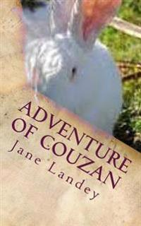 Adventure of Couzan: Chinese Version