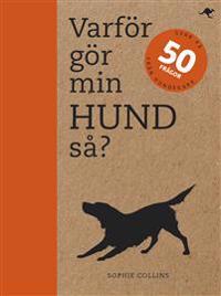 Varför gör min hund så? : svar på 50 frågor från hundägare