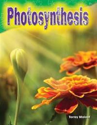 Photosynthesis (Grade 3)