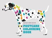 Postcard Colouring Book - Maisonette - böcker (9781849942874)     Bokhandel